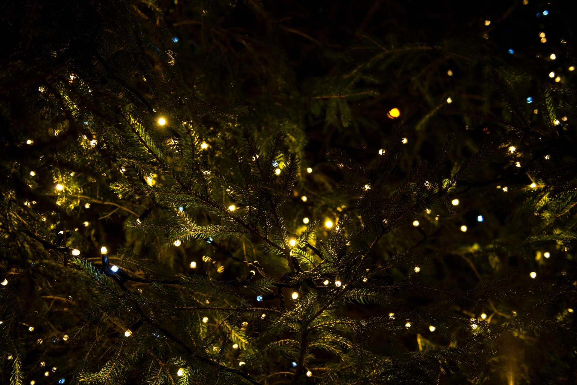 CHRISTMAS CLOSING DATES